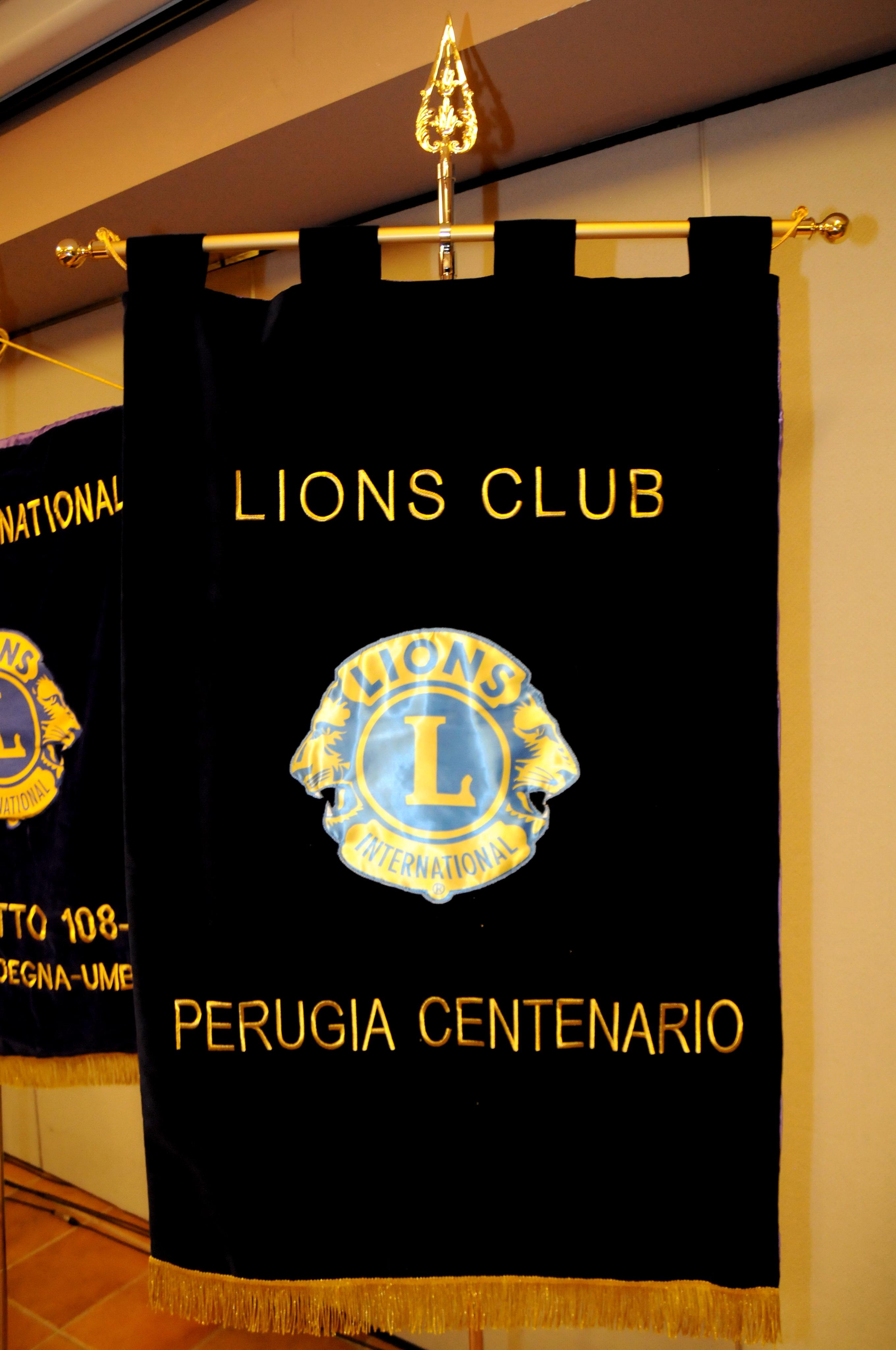 lions_02